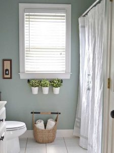Succulents - Bathroom Ideas Vancouver