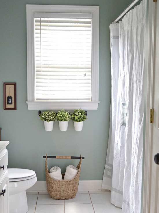 Succulents - Bathroom Ideas Vancouver